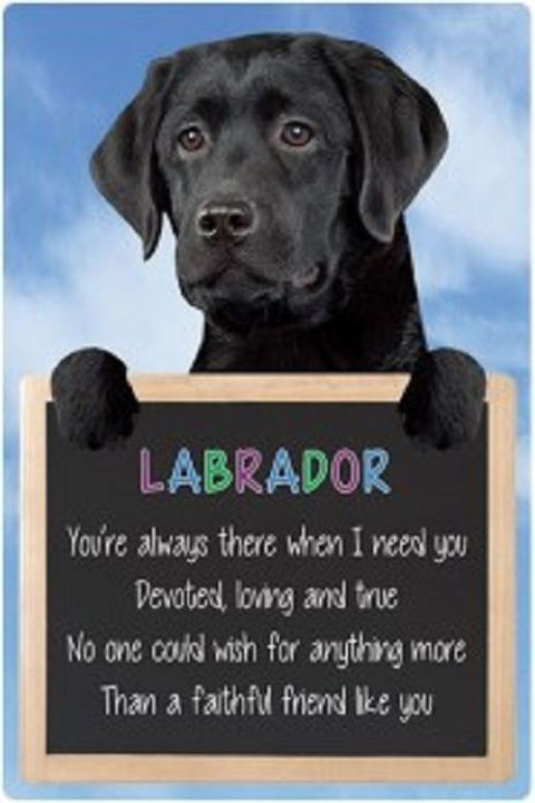 Black Labrador  3D home hang up sign